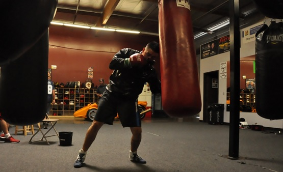 Exercises for beginners on a punching bag