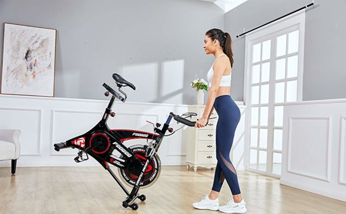 L NOW pooboo D680 Indoor Cycling Bike review