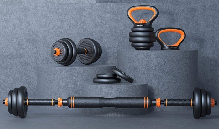 Pinroyal 4-in-1 Dumbbell-min